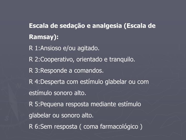 Escala de sedação e analgesia (Escala de Ramsay):