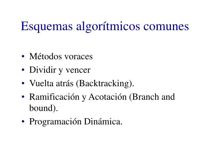 Esquemas algorítmicos comunes