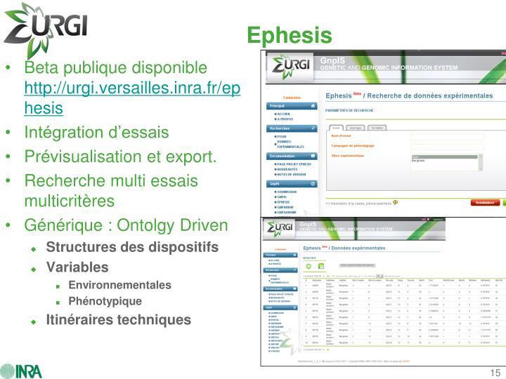 Ephesis