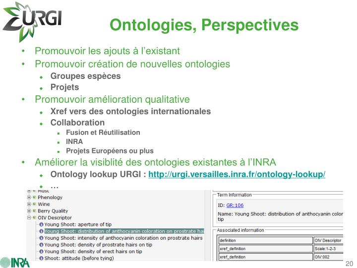 Ontologies, Perspectives