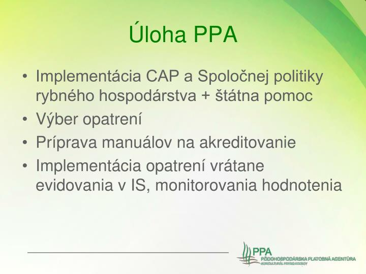 Úloha PPA