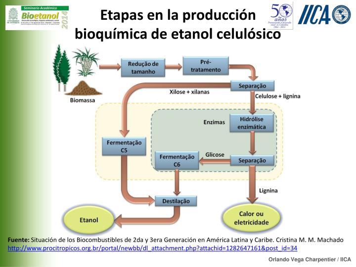Etapas en la producción bioquímica de etanol celulósico