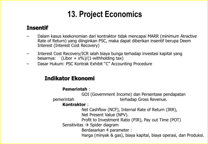 13. Project Economics