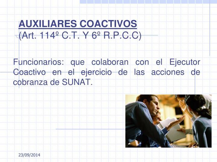 AUXILIARES COACTIVOS
