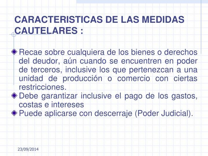 CARACTERISTICAS DE LAS MEDIDAS CAUTELARES :