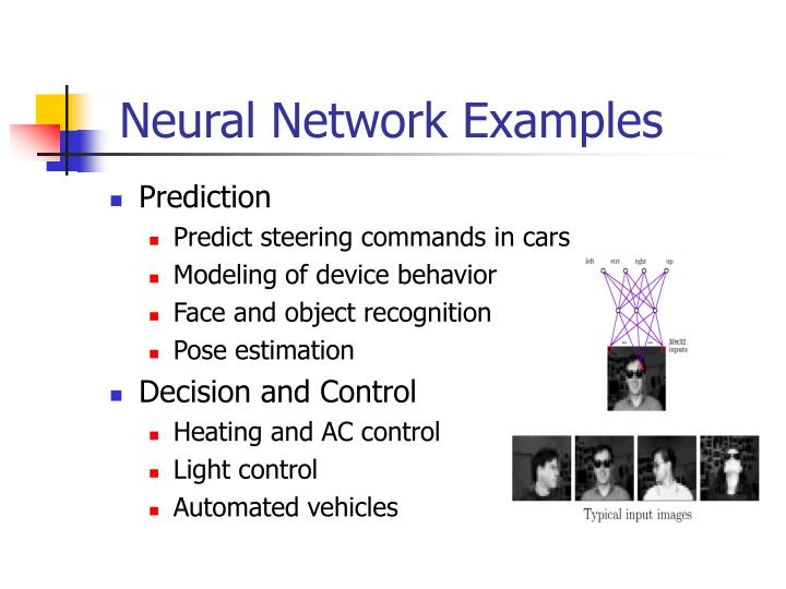Neural Network Examples