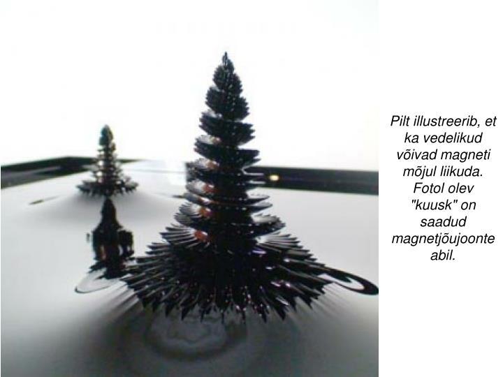 """Pilt illustreerib, et ka vedelikud võivad magneti mõjul liikuda. Fotol olev """"kuusk"""" on saadud magnetjõujoonte abil."""
