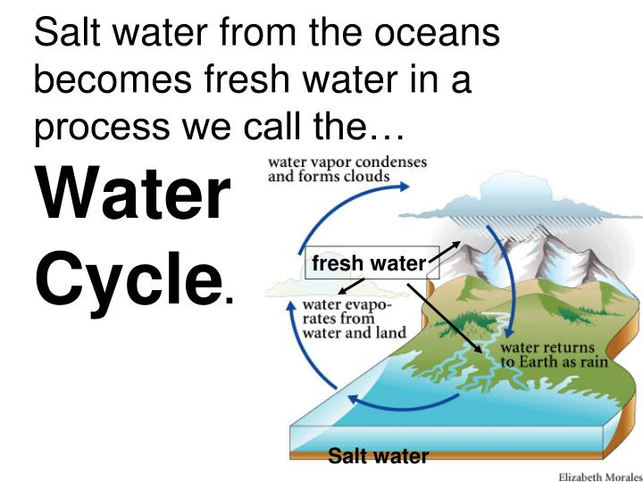Salt water from the oceans becomes fresh water in a process we call the…