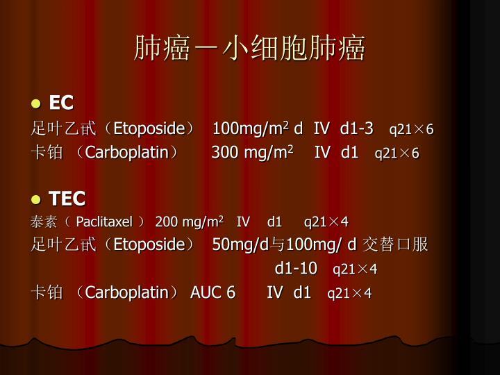 肺癌-小细胞肺癌