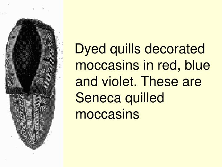 Dyed quills decorated moccasins in red, blue and violet. These are Seneca quilled moccasins