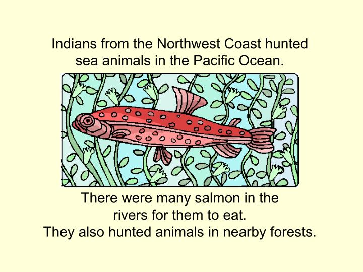 Indians from the Northwest Coast hunted sea animals in the Pacific Ocean.