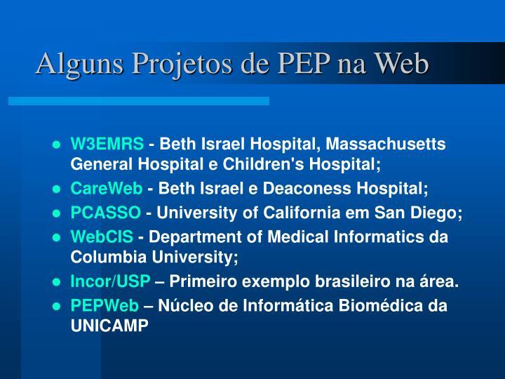 Alguns Projetos de PEP na Web