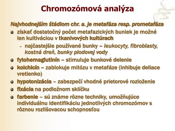 Chromozómová analýza