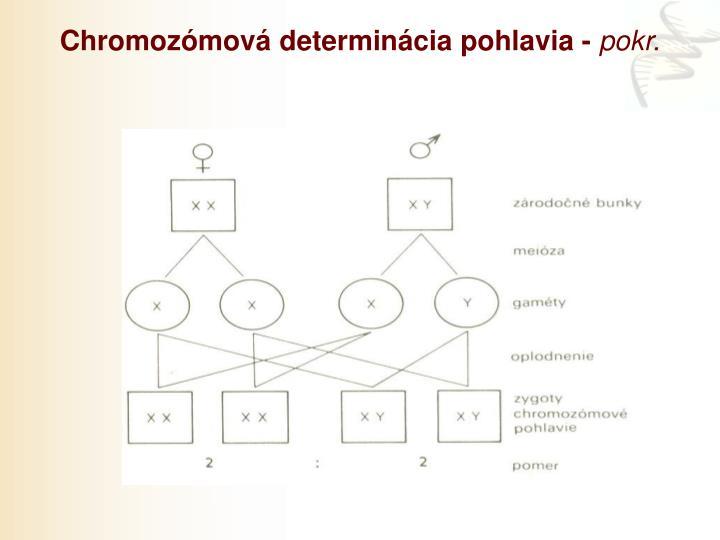 Chromozómová determinácia pohlavia -