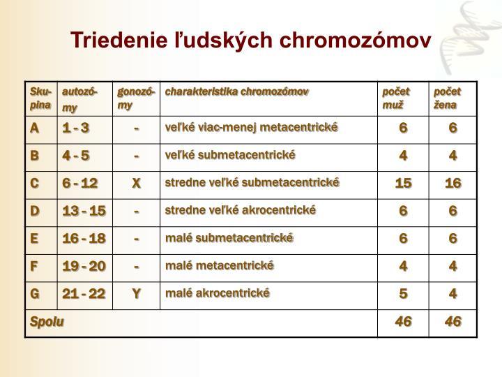 Triedenie ľudských chromozómov