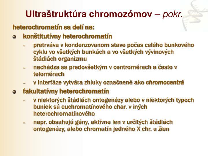 Ultraštruktúra chromozómov