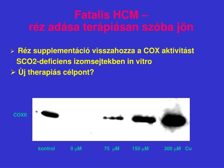 Fatalis HCM –