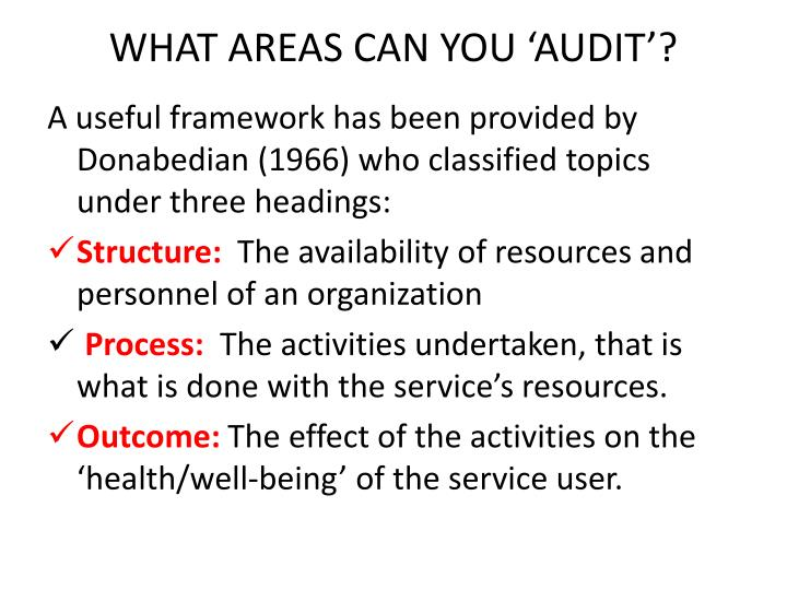 WHAT AREAS CAN YOU 'AUDIT'?