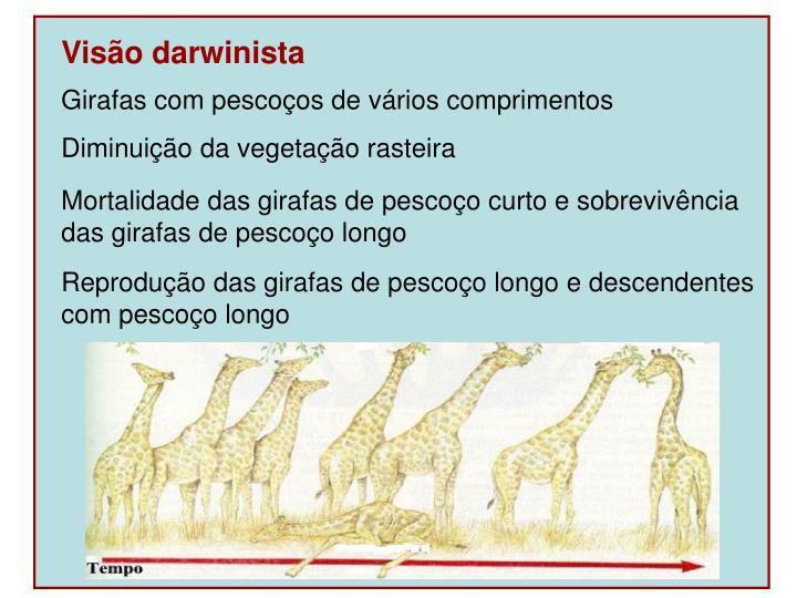 Visão darwinista