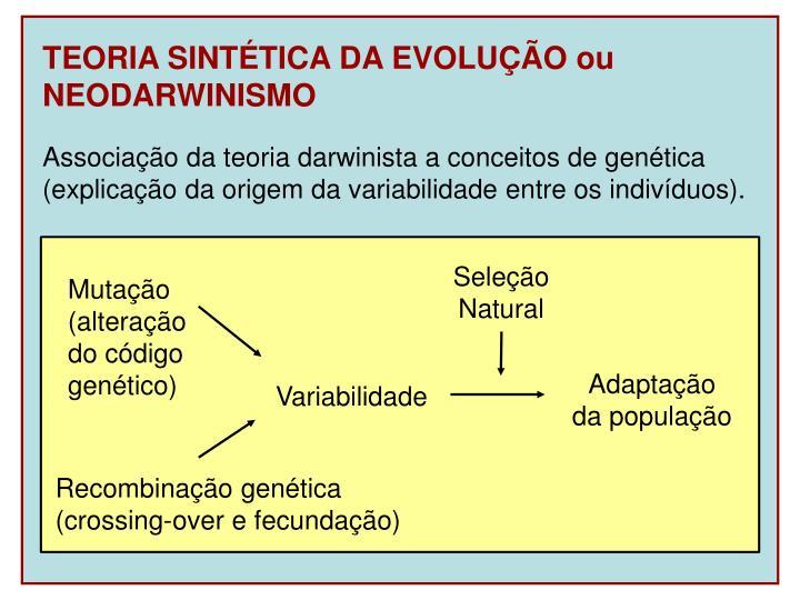 TEORIA SINTÉTICA DA EVOLUÇÃO ou