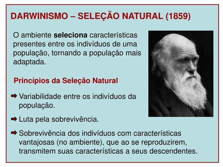 DARWINISMO – SELEÇÃO NATURAL (1859)