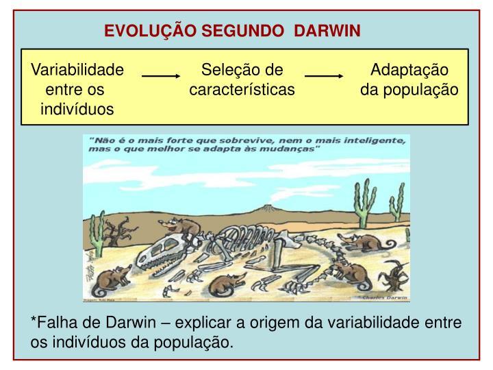 EVOLUÇÃO SEGUNDO  DARWIN