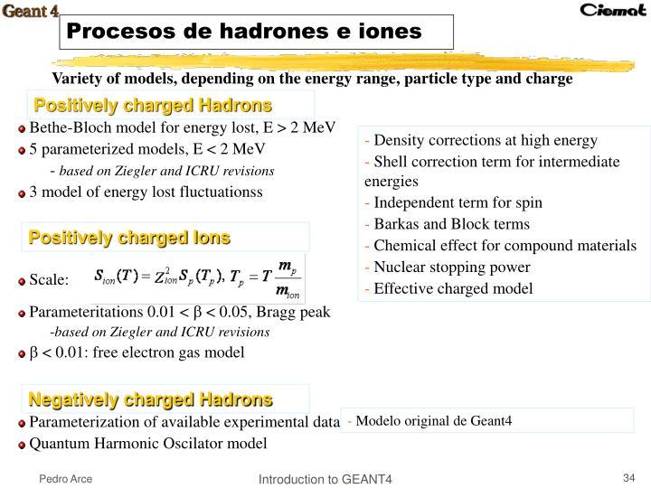 Procesos de hadrones e iones