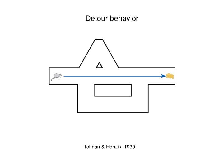 Detour behavior