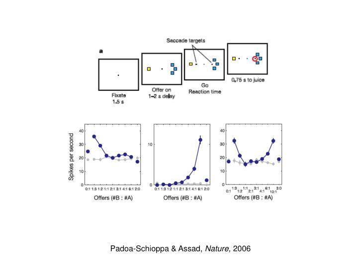 Padoa-Schioppa & Assad,
