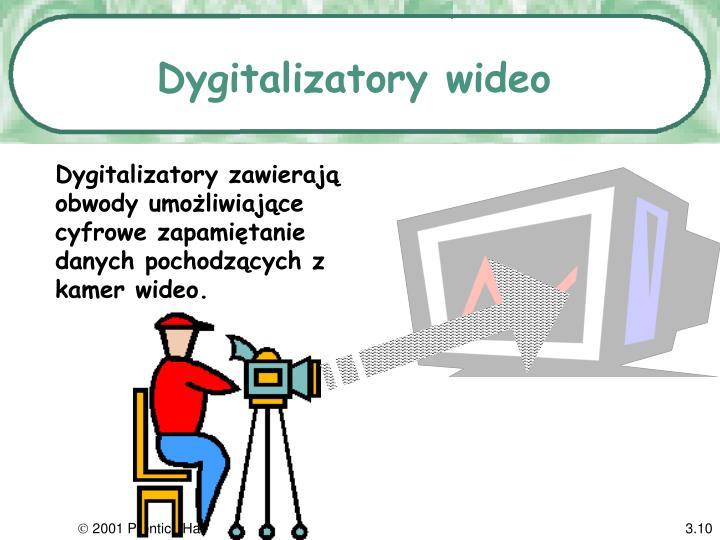 Dygitalizatory wideo