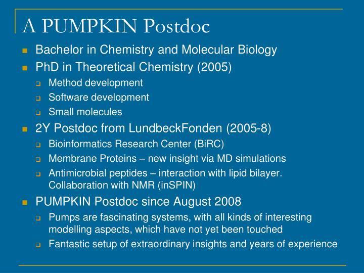 A PUMPKIN Postdoc