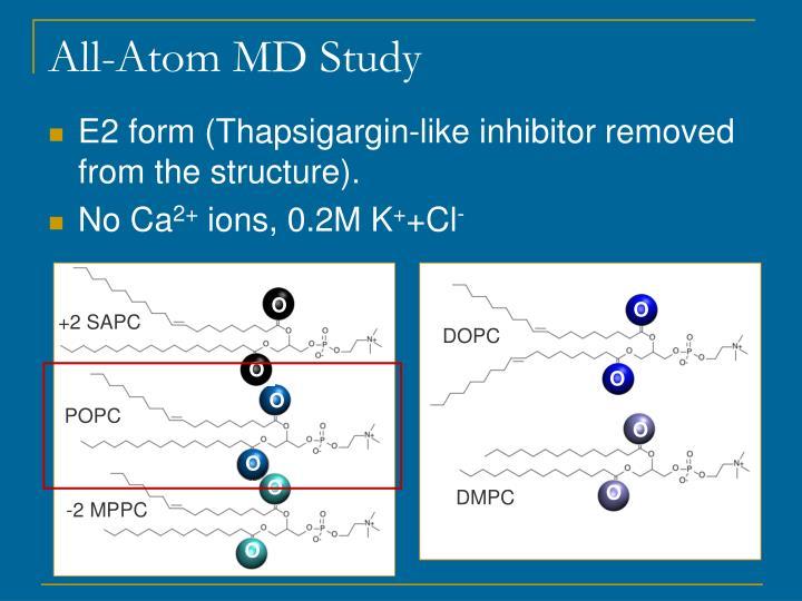 All-Atom MD Study