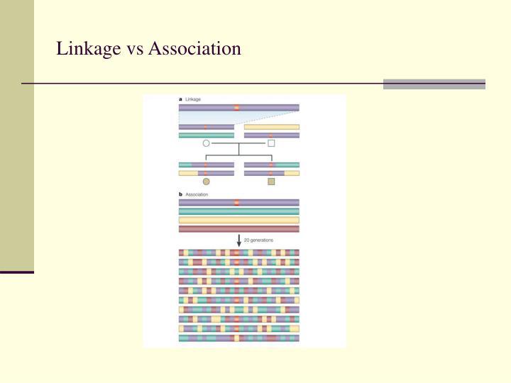 Linkage vs Association