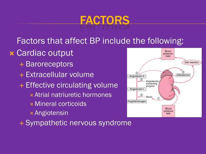 Factors that affect BP include the following: