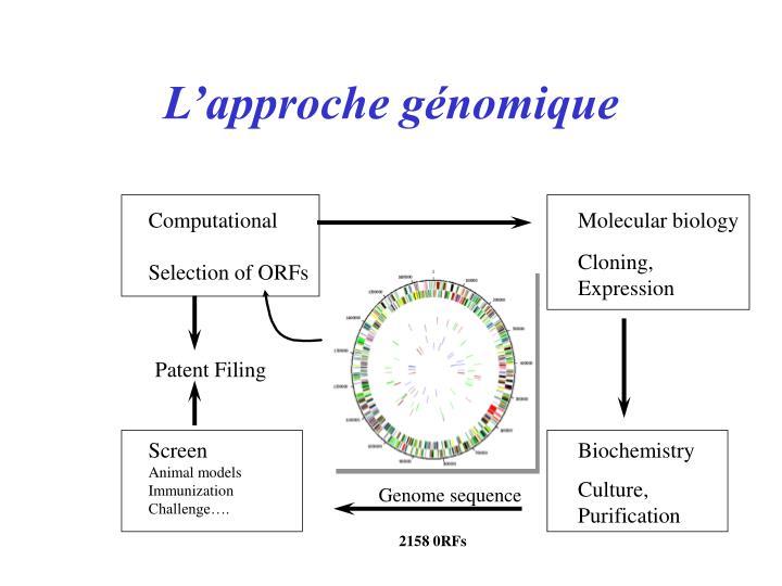 L'approche génomique