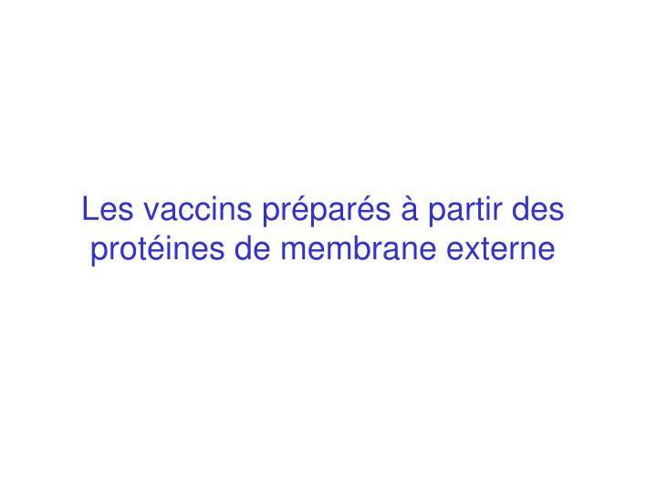 Les vaccins préparés à partir des protéines de membrane externe