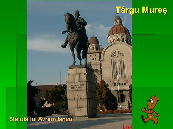 Târgu Mureş