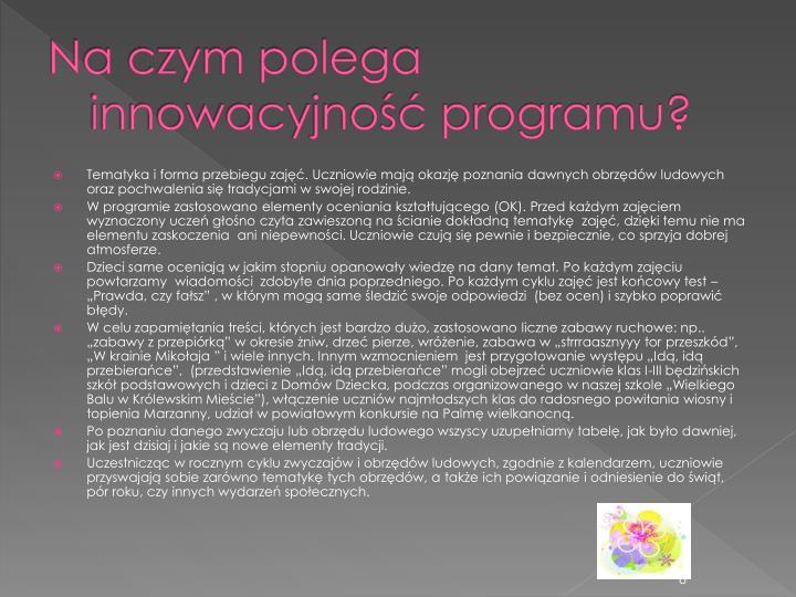 Na czym polega innowacyjność programu?