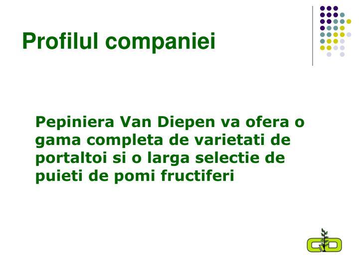 Profilul companiei
