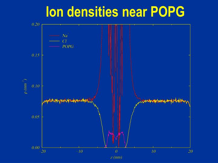 Ion densities near POPG