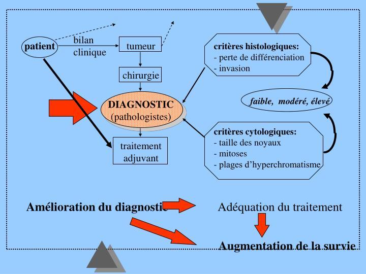 critères histologiques: