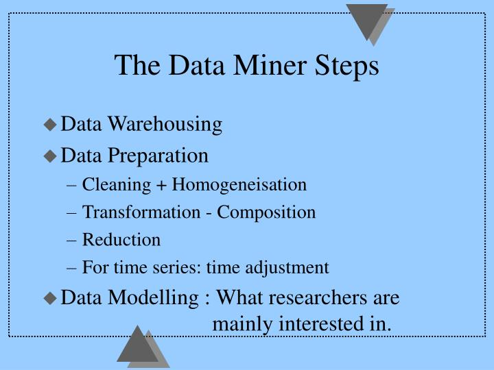 The data miner steps