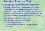 practical exercise task