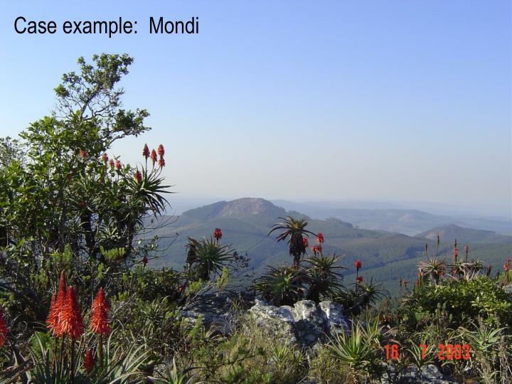 Case example:  Mondi