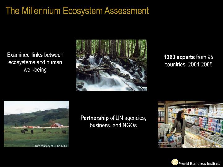 The Millennium Ecosystem Assessment