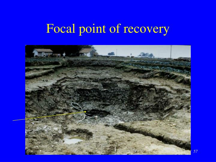 Focal point of recovery