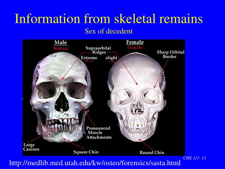Information from skeletal remains