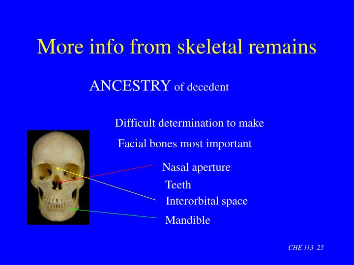 More info from skeletal remains