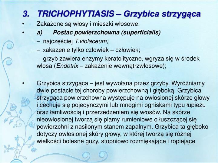 3.TRICHOPHYTIASIS – Grzybica strzygąca