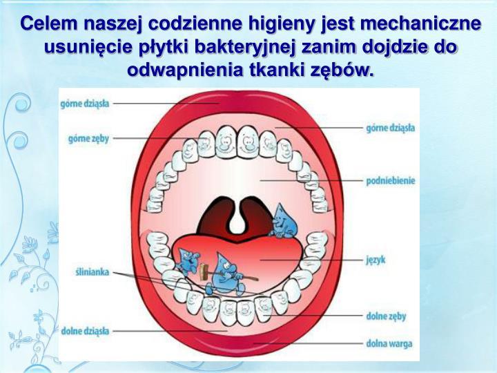 Celem naszej codzienne higieny jest mechaniczne usunięcie płytki bakteryjnej zanim dojdzie do odwapnienia tkanki zębów.